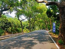 Jiji Green Tunnel