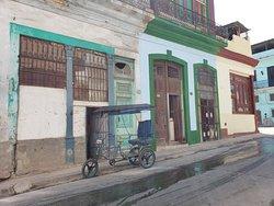 Authentic Havana