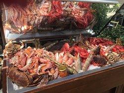 Φρέσκα όστρακα, θαλασσινά και ψάρια στην Ιωλκό.