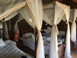 Triple Room with attached bathroom at Angata Camp Tarangiere (fabulous)