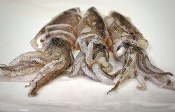 Usiamo il miglior pescato fresco in circolazione, provare per credere 😋