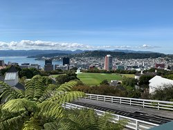 Wellington must-do