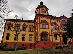 The Grammar School (Gymanzium)
