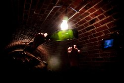 In the cellar