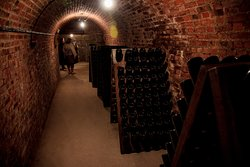 The cellar fo the Egrot et Filles house