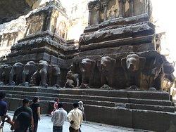 The elephant gallery