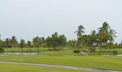 View of the Denarau golf course.