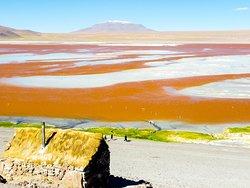 Laguna Colorada visitée à notre rythme