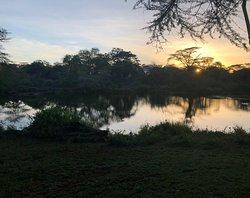 EO RLA Kenya 2019