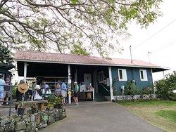 Greenwell Coffee Plantation