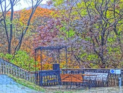 осень, место для пикника