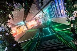 Mountbatten Stairs - Bloom Showcase, Laser Tunnel