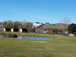 Wetland area behind campground