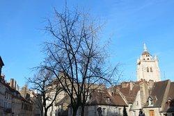 On peut surtout y voir le panorama, en particulier une vue sur la collégiale de Dole.