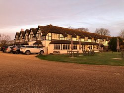 Dog Friendly New Forest Stay