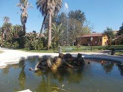 Orto Botanico di Roma - Fontana dei tritoni