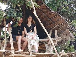 Tree House sigiriya village.
