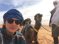 Before the camels