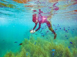 Long Dong Snorkeling