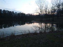 Two Kentucky Spring nights