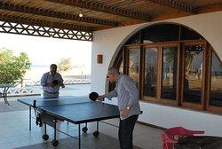 Aurora Beach Safari Table Tennis, join the game!