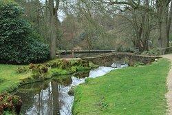 Water garden, Wakehurst