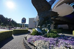 Skookum Hyak, landed at Seven Feathers Casino Resort to grace the main entrance. At over 33 feet high and weighing over 10,000 pounds, it is the largest bronze casting of an eagle in the world! Don't forget to have your picture taken with Skookum Hyak!