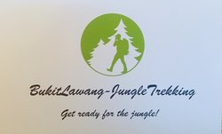 Bukit Lawang Jungle Trekking Tours - Day Tours