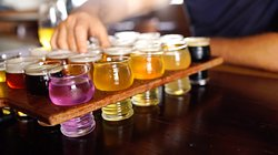 20 Beer Tasting Paddle to Share