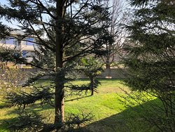 This morning... a little piece of my own home garden.... pictures taken from my bedroom, few kilometres from the beautiful and very big Parco Alto Milanese...