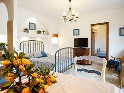 appartement F2  n°1 avec une chambre séparée