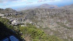 Fynbos down into Gorge