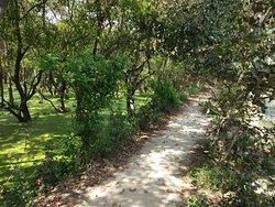 The nature walk in the Shekha Jheel Aligarh
