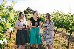 Wine in the vines!