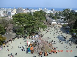 本丸広場、風もなく良かったです。