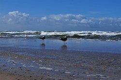 Darłówko Beach