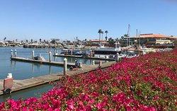 Ventura Harbor Village Location
