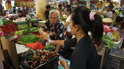 Daysi shopping for ingredients