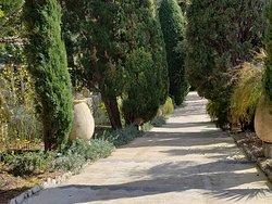 typical main garden path