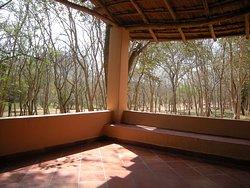 Private Patio Facing Forest