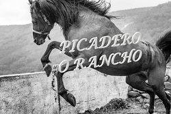 Picadero O rancho!!!!