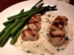 Grilled scallops with goat cheese risotto
