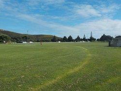 Grassy football field