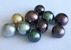 The most beautiful pearls in the world. SIBANI Pearls farm