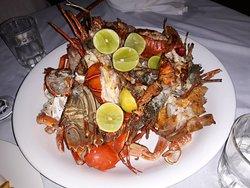 special dinner granchi aragoste e cicale