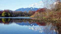 Trout Lake - Vancouver, B.C.