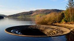 Giant Plug Hole