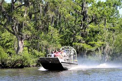 Would you look at that scenery! These airboats traverse the swamps of New Orleans like no other!