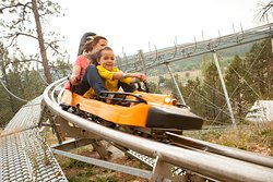 Ride the Mountain Coaster at Rush Mountain Adventure Park, Home of Rushmore Cave.