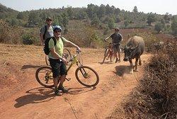 Kalaw Trekking & Biking Tour
